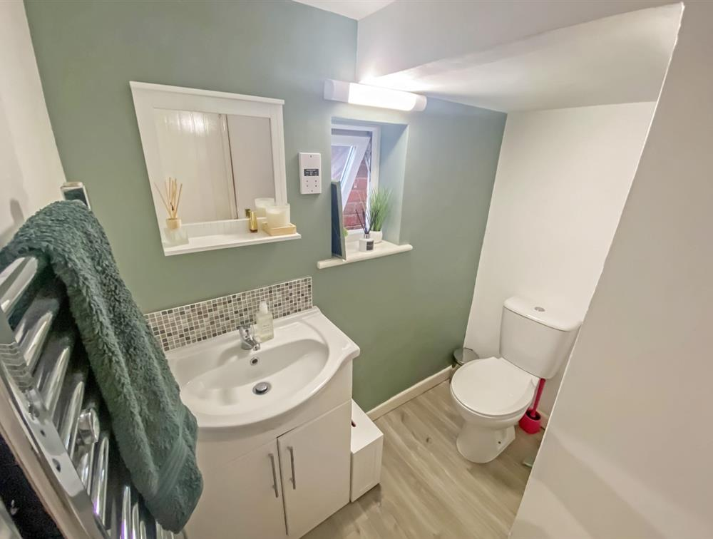 Downstairs WC/Shower Room